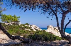 Arbres et végétation sauvage sur une côte rocheuse dans Sith image stock