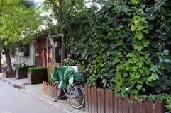 Arbres et vélo de la Chine Pékin Hutong Photographie stock libre de droits