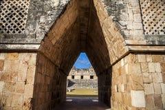 Arbres forestiers du Mexique Uxmal de pyramides Photo libre de droits