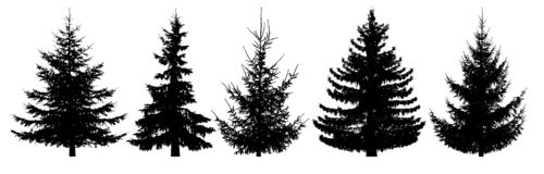 Arbres forestiers réglés Silhouette d'isolement de vecteur illustration libre de droits