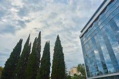 Arbres grands à côté d'un bâtiment en verre et d'un ciel nuageux Photo stock