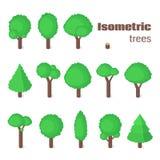 Arbres isométriques réglés Photo libre de droits