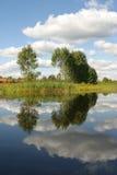 Arbres, l'eau Photographie stock