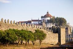 Arbres le long des murs de Fernandina à Porto images stock