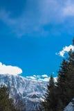 Arbres, montagnes et ciel Photographie stock libre de droits