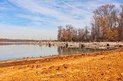 Arbres morts autour de lac Photographie stock