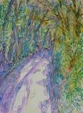 Arbres moulant les ombres fraîches sur une route Images libres de droits