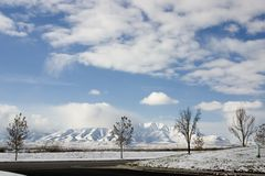 Arbres, neige et les montagnes Photographie stock libre de droits