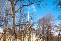 arbres nus et vue du vieux bâtiment d'Amirauté Photographie stock libre de droits