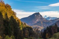 Arbres oranges, et montagnes avec Mont Blanc derrière Image libre de droits