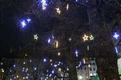 Arbres ornated lumineux sur les rues de Munich Photo libre de droits