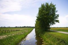 Arbres par le canal aux terres cultivables Image libre de droits