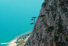 Arbres (pins) sur les roches au-dessus de la ville. Image stock