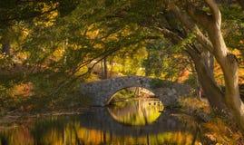 Arbres, pont et rivière Photographie stock libre de droits
