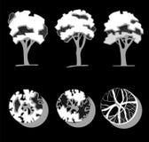 Arbres pour une conception de paysage Différents arbres tirés par la main d'isolement sur le fond noir, croquis, dessin architect illustration de vecteur