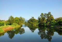 Arbres réfléchissant sur le fleuve Photos libres de droits