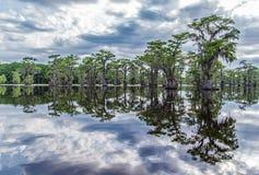 Arbres réfléchissant sur le lac Photo libre de droits