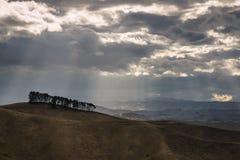 Arbres rétro-éclairés sur la colline au coucher du soleil Images libres de droits