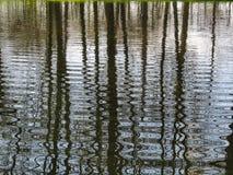 Arbres reflétés sur la surface ondulée de l'eau photo stock