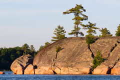 Arbres s'élevant hors de grandes roches sur le rivage Image libre de droits