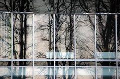 Arbres se reflétant dans l'immeuble de bureaux Photo libre de droits