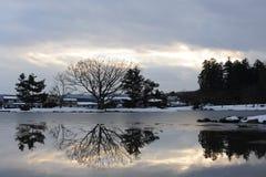 Arbres se reflétant dans un étang avant crépuscule en hiver Images libres de droits