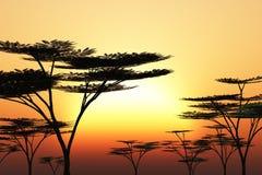 Arbres silhouettés au coucher du soleil illustration de vecteur