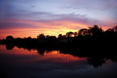 Arbres silhouettés contre le coucher du soleil Images stock