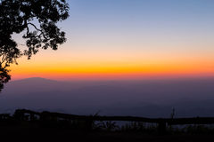 Arbres silhouettés et horizon Photographie stock