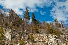 Arbres sur des roches de montagne Photographie stock libre de droits