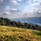 Arbres sur la colline verte Photographie stock libre de droits