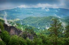 Arbres sur la montagne Carpathien, l'Europe photo libre de droits
