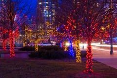 Arbres sur la rue décorée des lumières de Noël Photos libres de droits