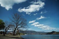 Arbres sur le rivage du lac Lugu photo stock
