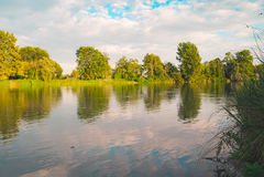Arbres tranquilles et nuages de rivière Photos libres de droits