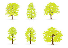 Arbres verts illustration libre de droits