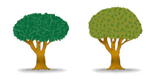 Arbres verts avec des lames de groupe illustration stock