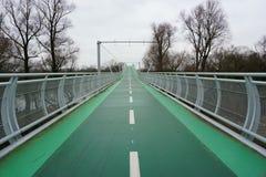 Arbres verts de pont en vélo Photos libres de droits