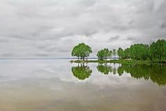 Arbres verts reflétés dans le lac Photographie stock