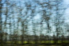 Arbres verts - une vue brouillée de fenêtre de train dedans Images libres de droits