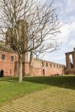 Arbroath Abbey Ruins en Escocia Foto de archivo libre de regalías