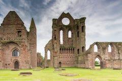 Arbroath antico Abbey Ruins Immagine Stock Libera da Diritti