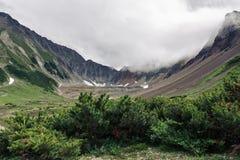 Arbustes à feuilles persistantes s'élevant dans le beau cirque de montagne sur le Kamtchatka Photos libres de droits