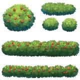 Arbustes en parc illustration libre de droits