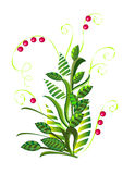 Arbusto abstrato verde com bagas Imagem de Stock Royalty Free