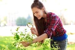 Arbusto de exploración del adolescente al aire libre Fotografía de archivo libre de regalías