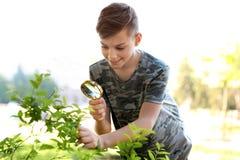 Arbusto de exploración del adolescente al aire libre Foto de archivo libre de regalías