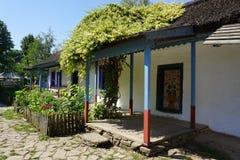 Arbusto del Lonicera delante de un pórtico rural de la casa foto de archivo libre de regalías
