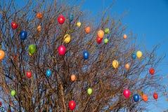 Arbusto del Spiraea con los huevos de Pascua coloridos Imagenes de archivo