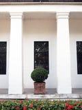 Arbusto e colunas Imagem de Stock